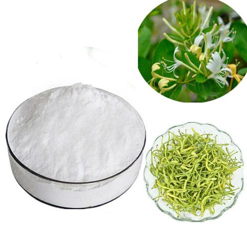 Honeysuckle flower extract chlorogenic acid