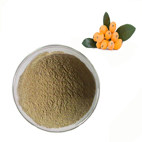 loquat leaf extract corosolic acid