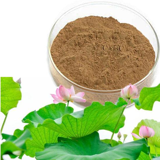 Lotus leaf extract Nuciferine