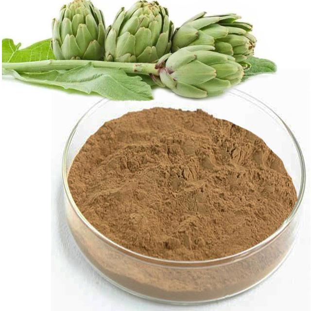 Artichoke Extract Cynarin
